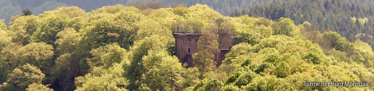Türme Burg Montclair